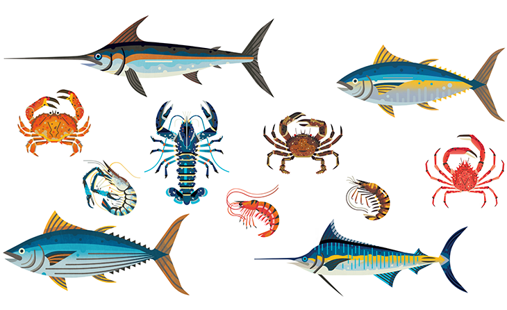 GFG Illustration examples